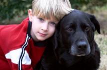 Pet Memorial Services