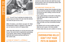 Important information about your pets and hot cars…
